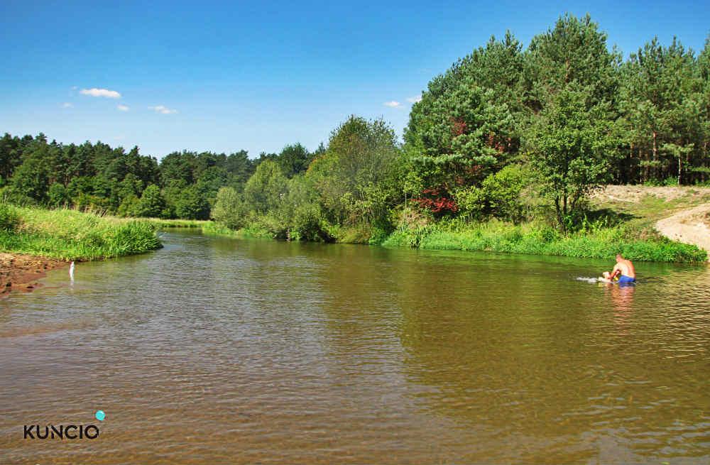 Widok rzeka Pilica
